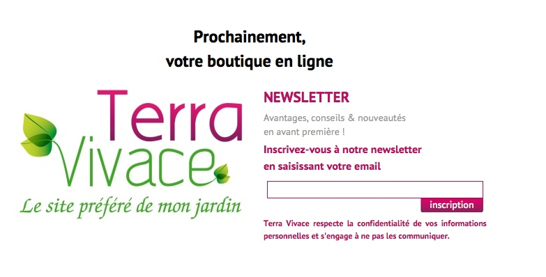 Site Web TerraVivace - Page provisioire