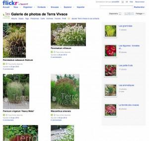 Terra Vivace compte flickr